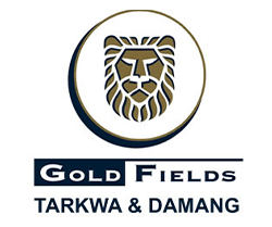 gold stocks to watch Gold Fields (GFI)