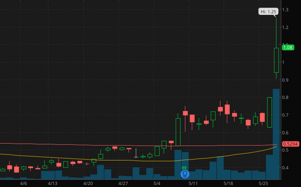 best gold stocks to buy sell International Tower Hill Mines (THM stock chart)