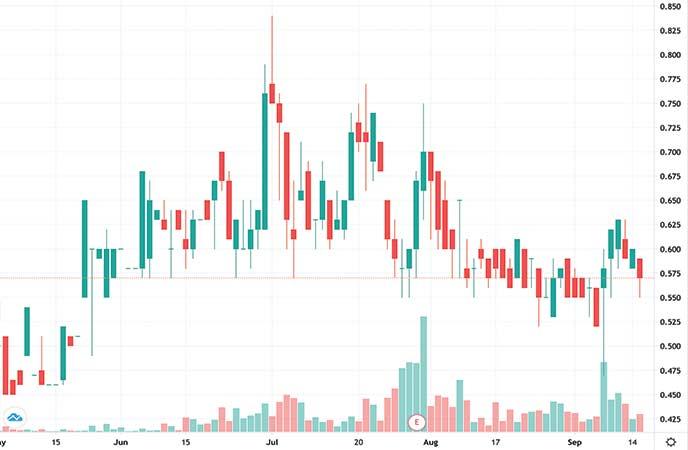best gold stocks to watch Freeman Gold (FMAN stock chart)